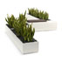 Launching: Strata - Park and Planter